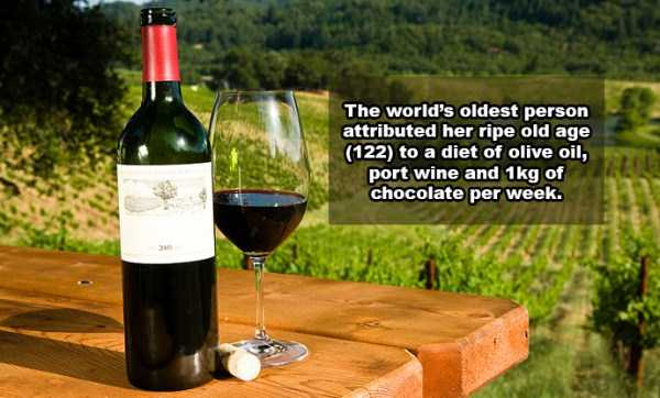 wine-facts (1)