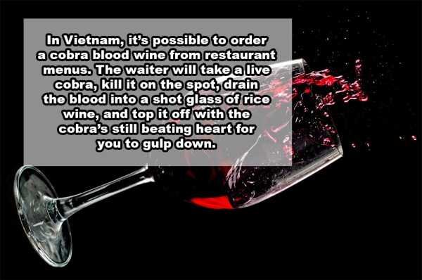 wine-facts (10)