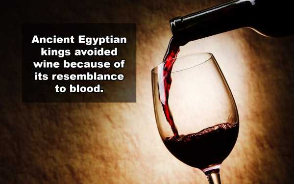 wine-facts (12)
