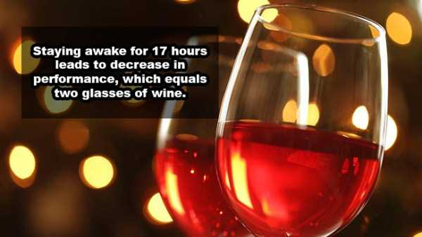 wine-facts (13)