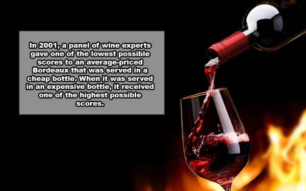 wine-facts (15)