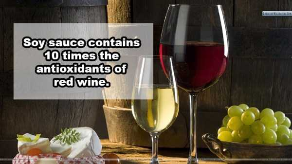 wine-facts (18)