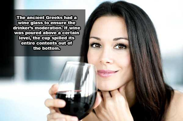 wine-facts (19)