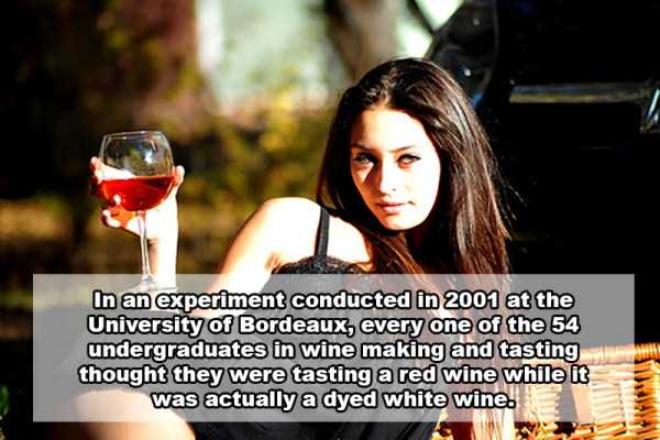wine-facts (2)