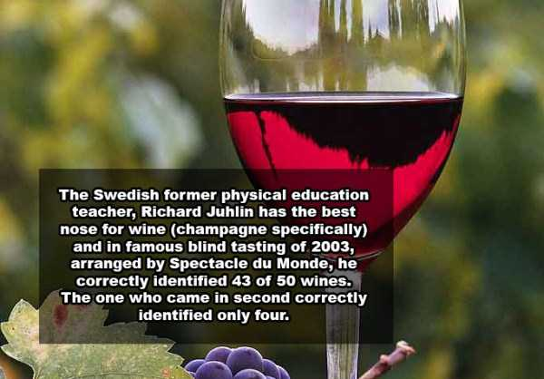 wine-facts (20)