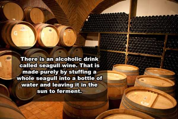 wine-facts (3)