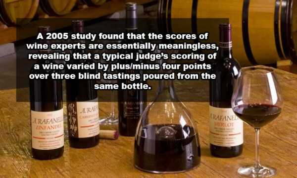 wine-facts (8)