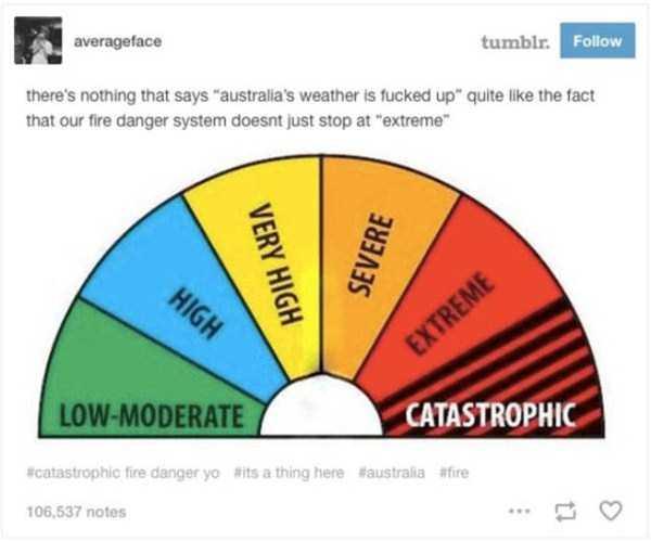 wtf-australia (13)