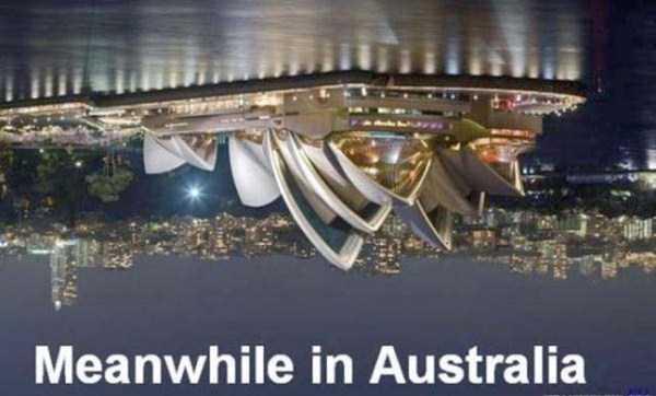 wtf-australia (29)