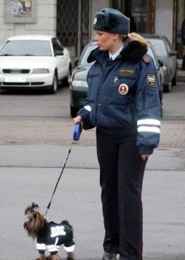 wtf-russia-pictures (13)