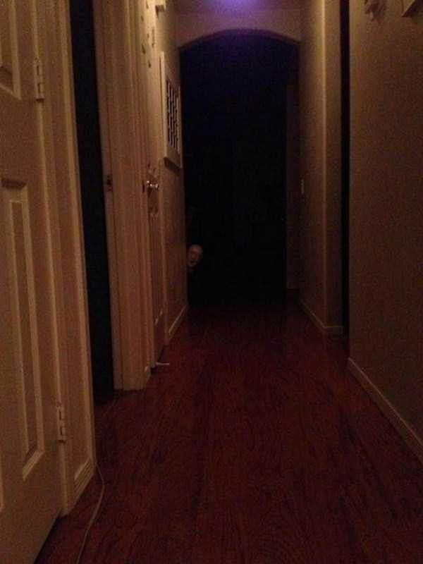 creepy-pictures (16)