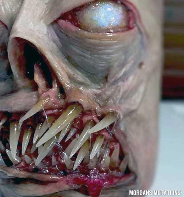 horror-smartphone-cases (10)