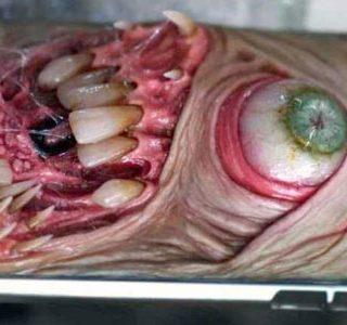 Horror Smartphone Cases (20 photos)