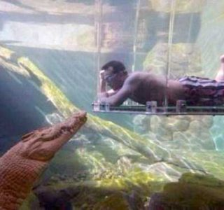 40 Nothing But Awesome Pics (40 photos)