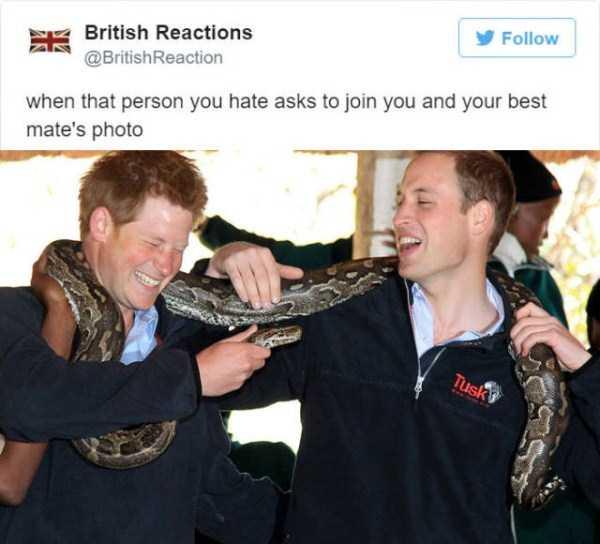 british-funny-tweets (11)