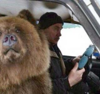 WTF Photos from the Planet Russia (37 photos)