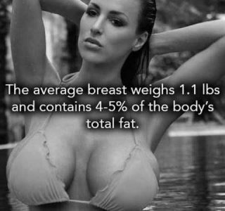 26 Lesser-Known Facts About Boobs (26 photos)