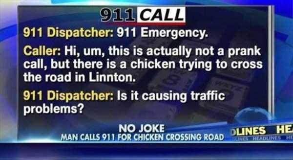 funny-911-calls (7)