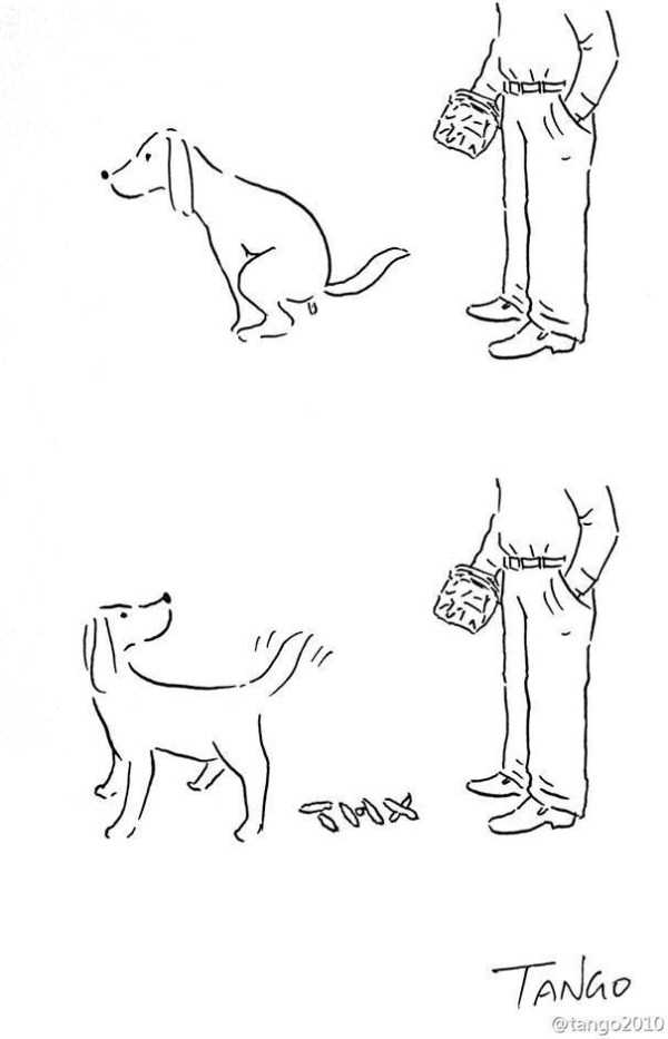 funny-cartoons (11)