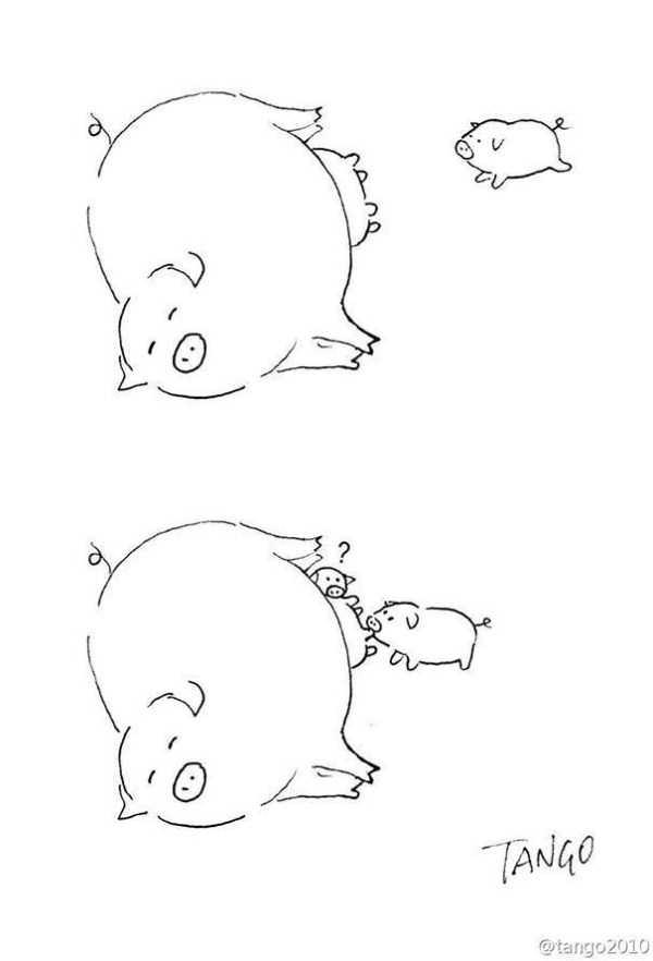 funny-cartoons (25)