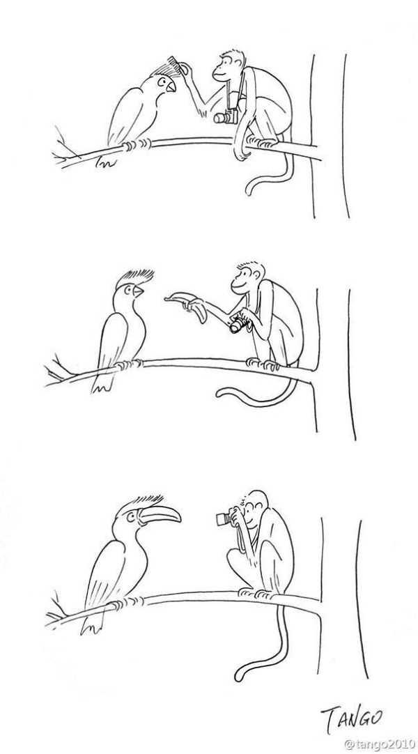funny-cartoons (36)