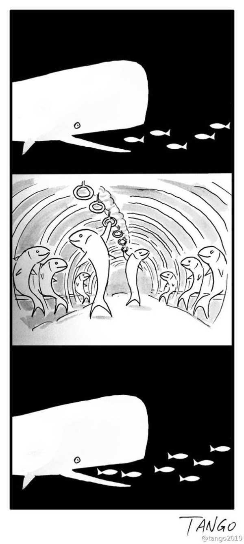 funny-cartoons (44)