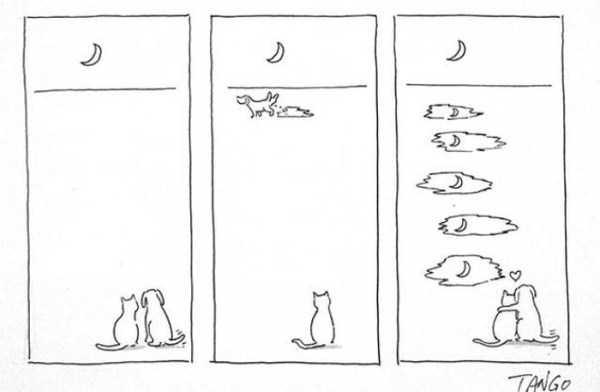 funny-cartoons (5)