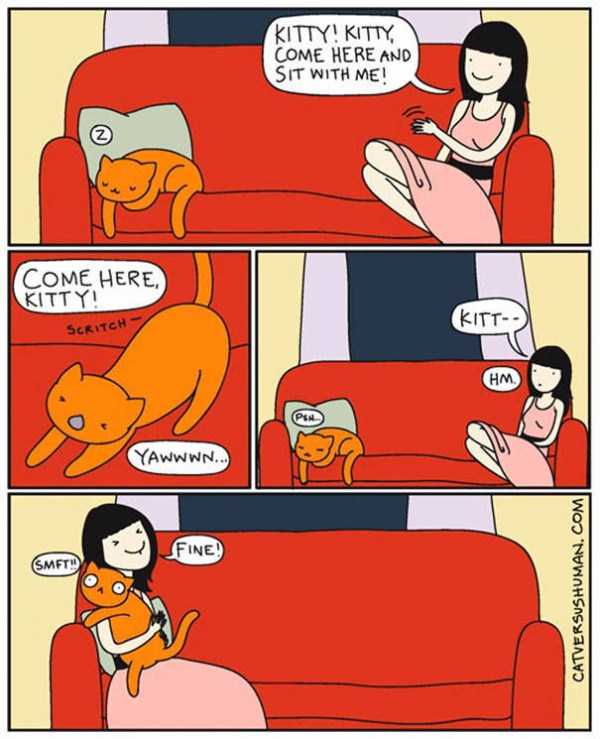 life-with-cats-funny-comics (104)