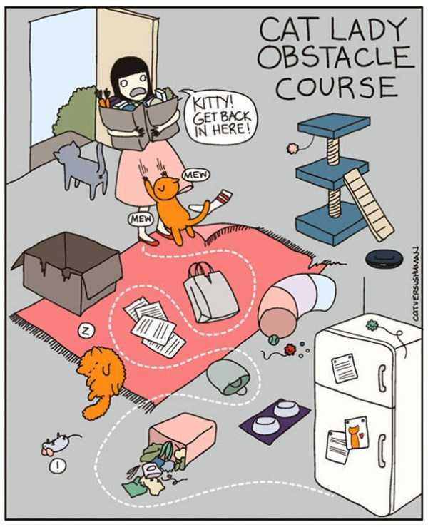 life-with-cats-funny-comics (11)