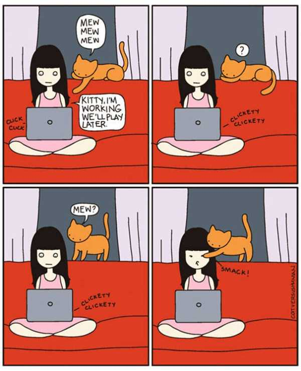 life-with-cats-funny-comics (19)