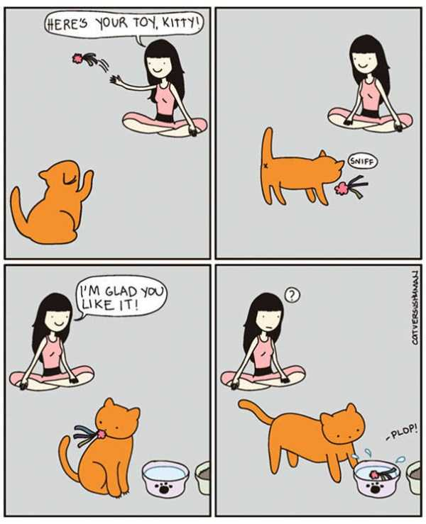 life-with-cats-funny-comics (20)