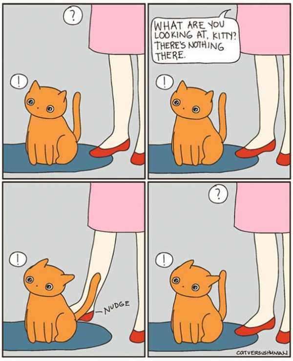 life-with-cats-funny-comics (23)