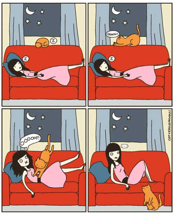 life-with-cats-funny-comics (26)