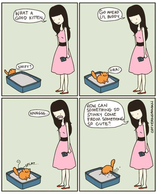 life-with-cats-funny-comics (28)