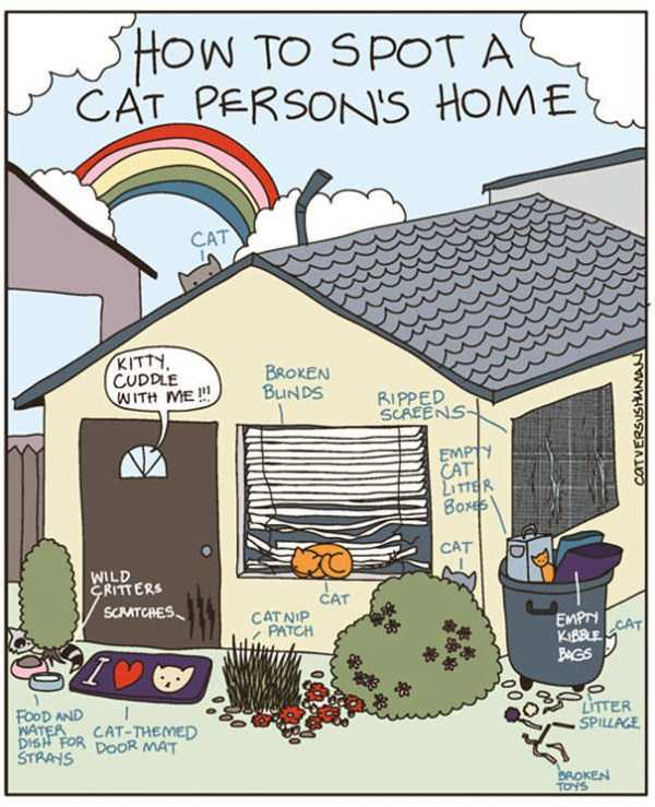 life-with-cats-funny-comics (34)