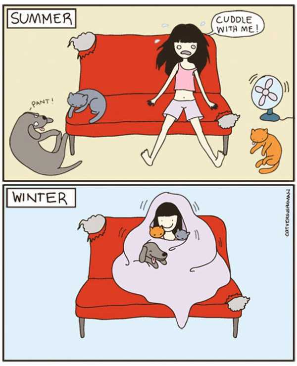 life-with-cats-funny-comics (36)