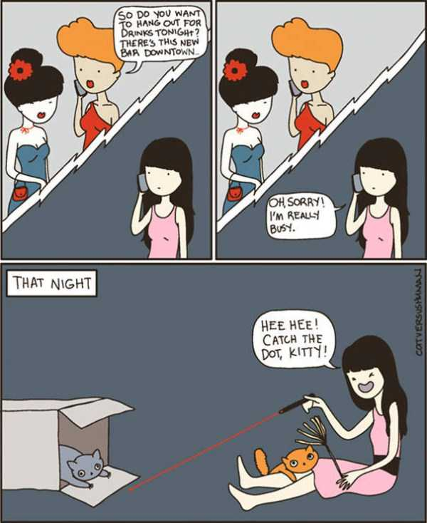life-with-cats-funny-comics (38)
