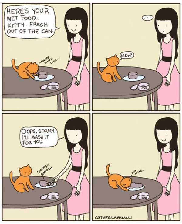 life-with-cats-funny-comics (41)