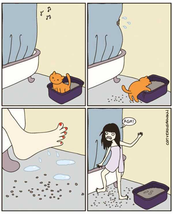 life-with-cats-funny-comics (44)