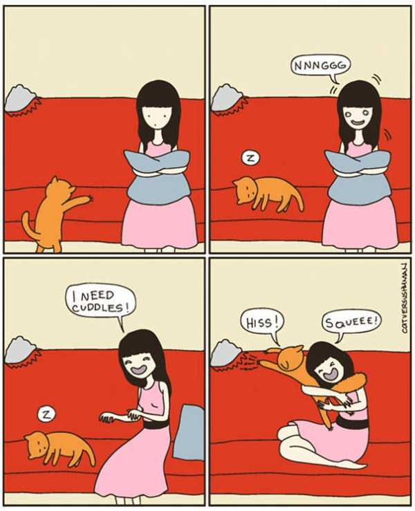 life-with-cats-funny-comics (45)