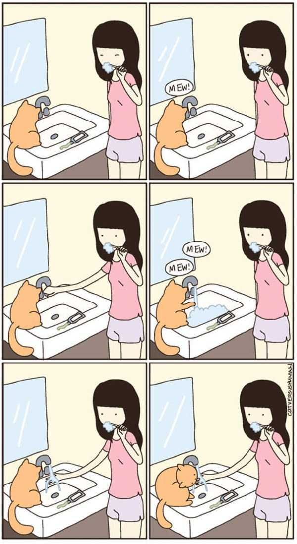 life-with-cats-funny-comics (48)