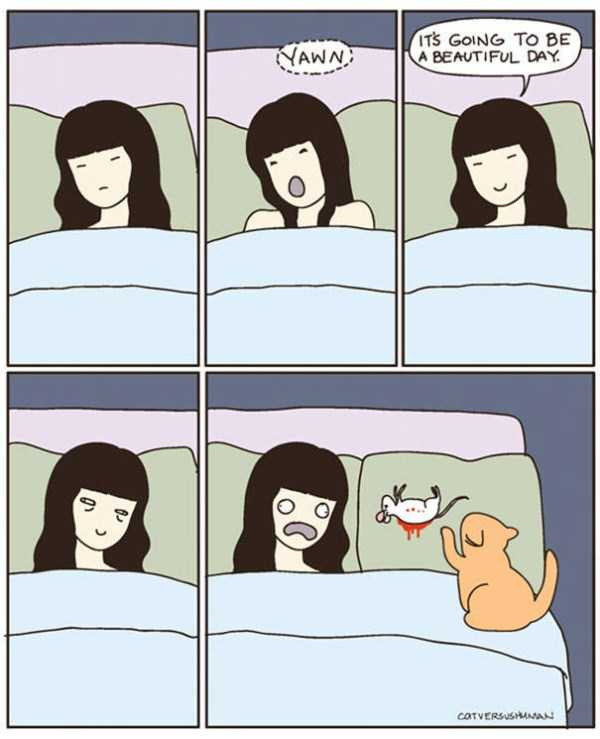 life-with-cats-funny-comics (55)