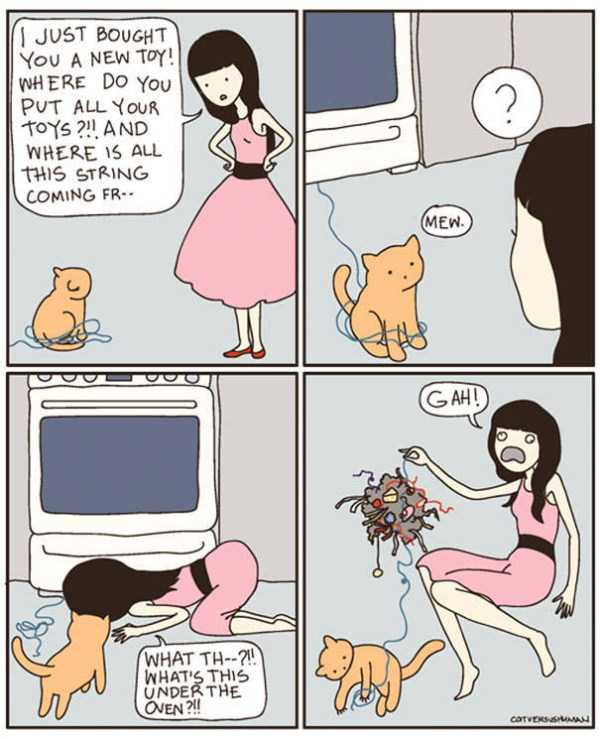 life-with-cats-funny-comics (57)