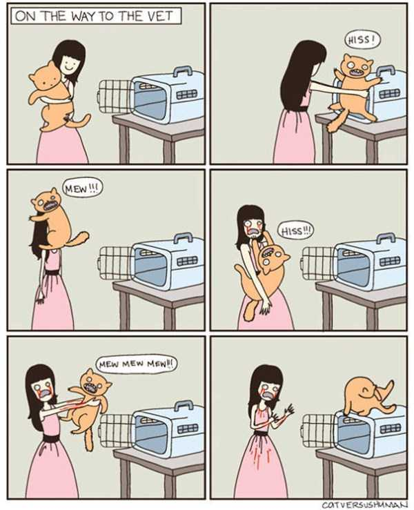 life-with-cats-funny-comics (71)