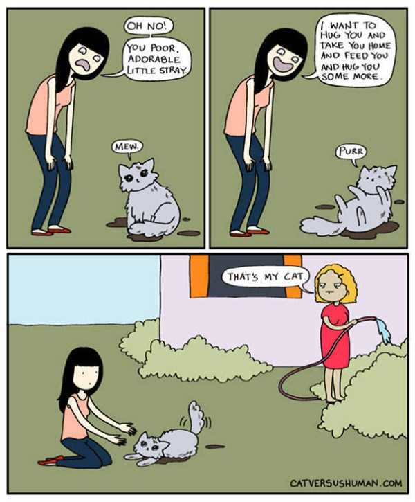 life-with-cats-funny-comics (79)