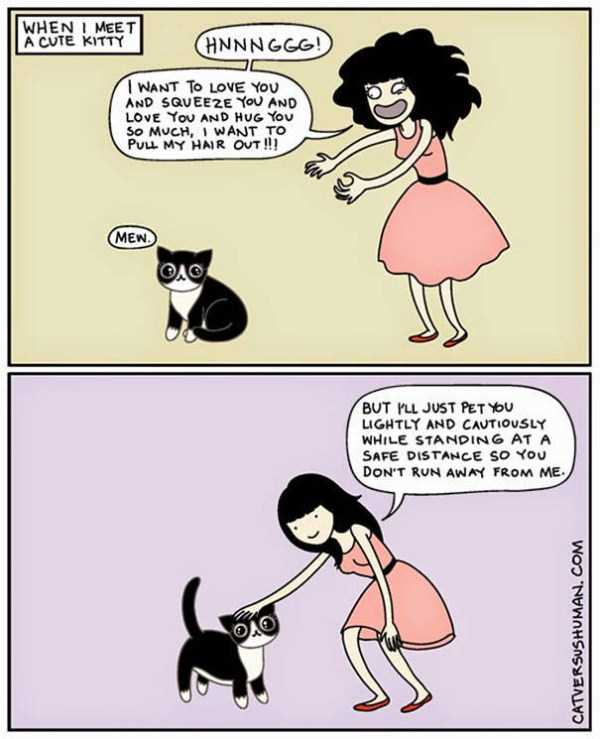 life-with-cats-funny-comics (81)