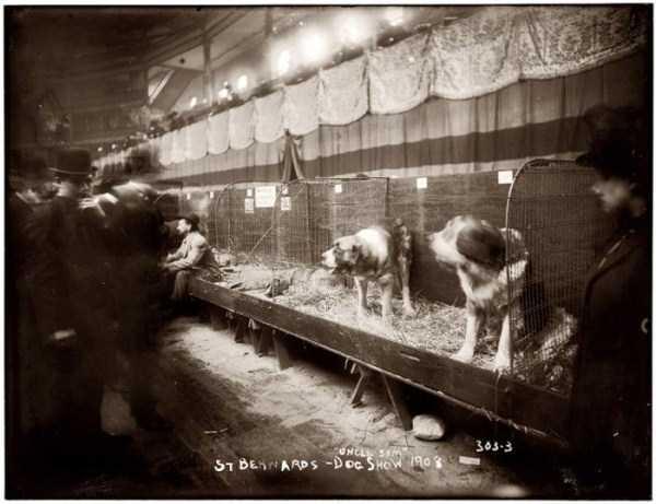 new-york-city-100-years-ago (27)