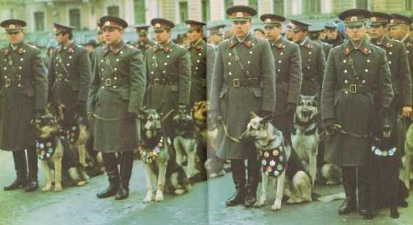 soviet-militia (16)