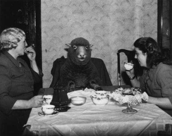 strange-vintage-photos (5)