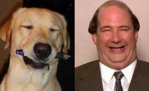 celebs-dog-look-alikes (17)
